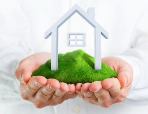 Male hands holding a green hill with a small house